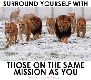 surround-yourself-with-those-on-the-same-mission-as-you-quote-1
